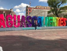 """""""On a tour of the local sights downtown!"""" - Johnson Huynh"""